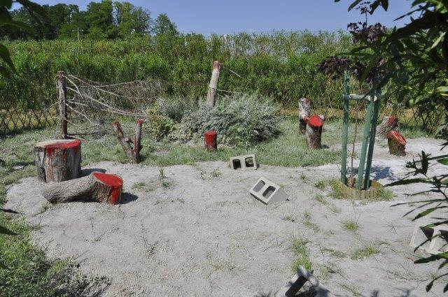 przeciw wycinaniu drzew
