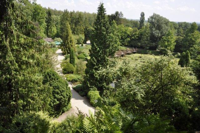 widok arboretum