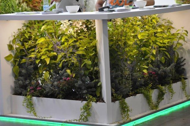 stolik przestrzeń pod wypełniona roślinami