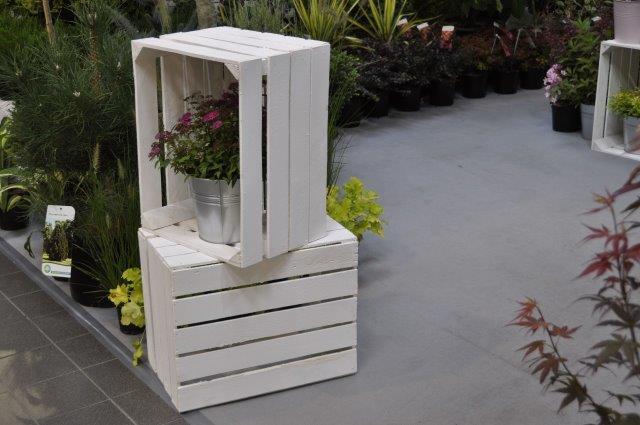 """""""kapliczka"""" z białych skrzynek dla rośliny"""