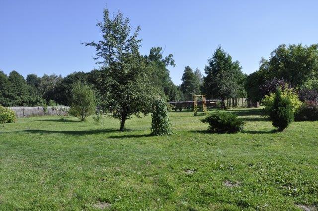 przestrzeń ogrodowa