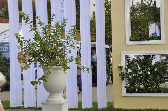 pawilon wystawienniczy ogród pokazowy wnętrze muzealne