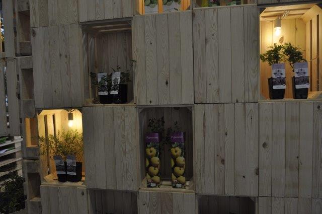 rośliny wyeksponowane w drewnianych niszach
