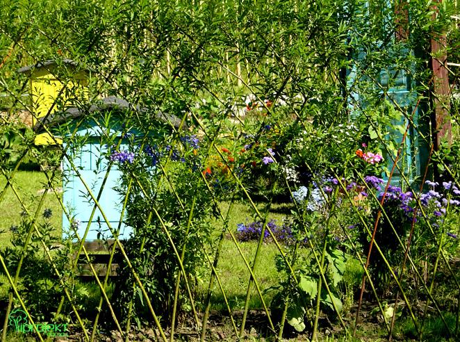 ogród widziany przez zielony wiklinowy płot IPROJEKT