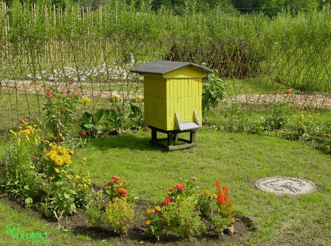 żólta część ogrodu z ulem IPROJEKT