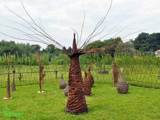 wiklinowa rzeźba autor Stanisłąw Dziubak IPROJEKT