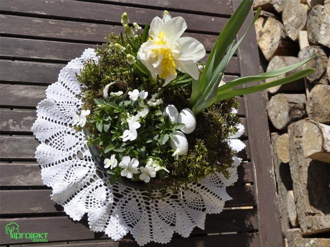 Wielkanocna kompozycja z roślin kwitnących na biała IPROJEKT