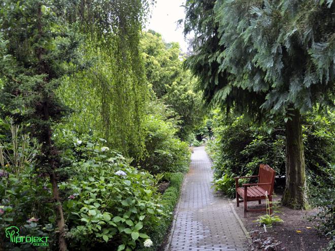 cienista alejka z ławką ogród botaniczny IPROJEKT