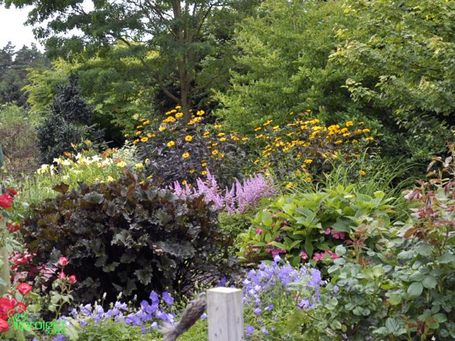 gra brązowych liści ogród botaniczny IPROJEKT